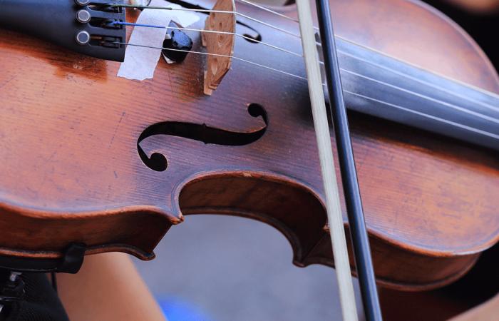 Violin Expert